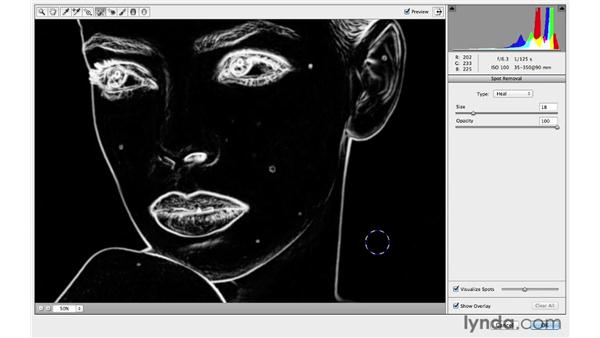 Improved retouching with the Spot Removal tool: Photoshop for Photographers: 2013 Creative Cloud Updates