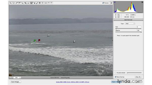 Removing larger distractions with the Spot Removal tool: Photoshop for Photographers: 2013 Creative Cloud Updates