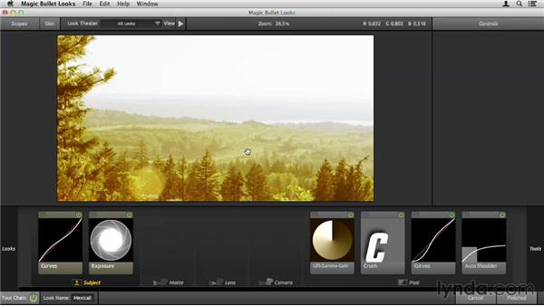 Using Looks presets: Up and Running with Magic Bullet Suite
