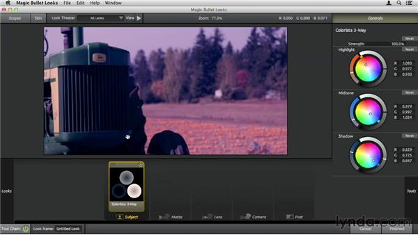 Using the Subject tools: Up and Running with Magic Bullet Suite