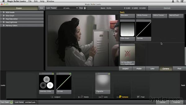 Using the Camera tools: Up and Running with Magic Bullet Suite