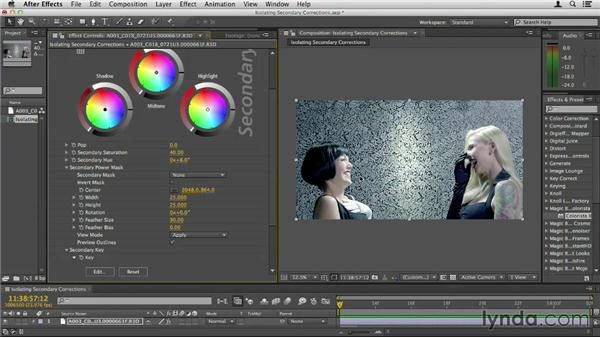 Isolating secondary corrections: Up and Running with Magic Bullet Suite