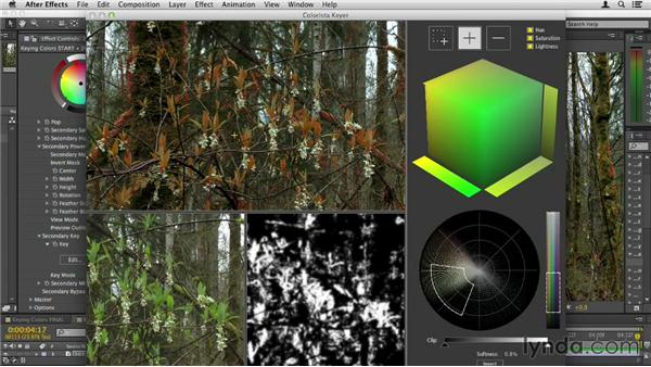 Keying colors: Up and Running with Magic Bullet Suite