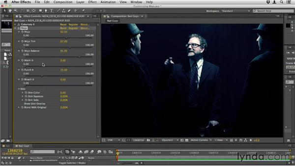 Customizing Mojo: Up and Running with Magic Bullet Suite