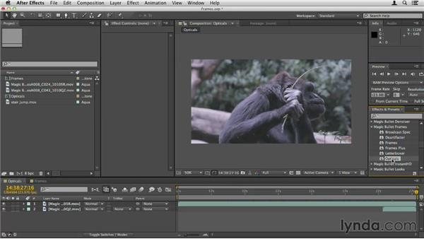 Using MB Frames: Up and Running with Magic Bullet Suite