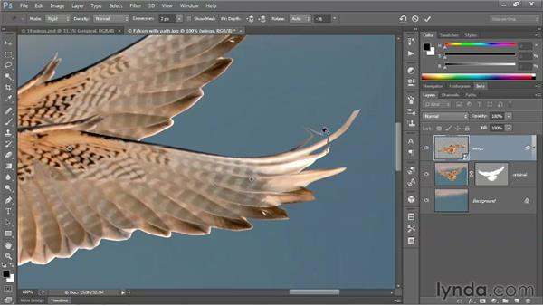 225 Animating bird wings with Puppet Warp: Deke's Techniques