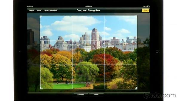 iPad photo gallery and screen capture: iPad Classroom Fundamentals