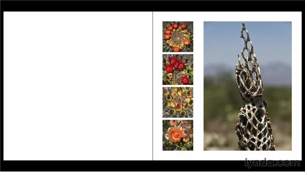 Breaking the grid: Designing a Photo Book