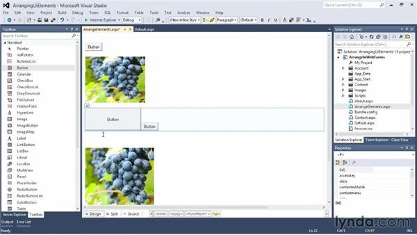 Arranging UI elements in ASP.NET: Visual Studio 2012 Essential Training