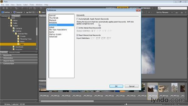 Bridge preferences: Bridge CC for Photographers