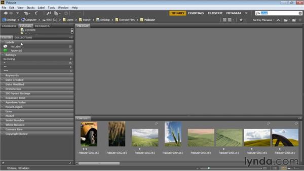 Searching and filtering: Bridge CC for Photographers