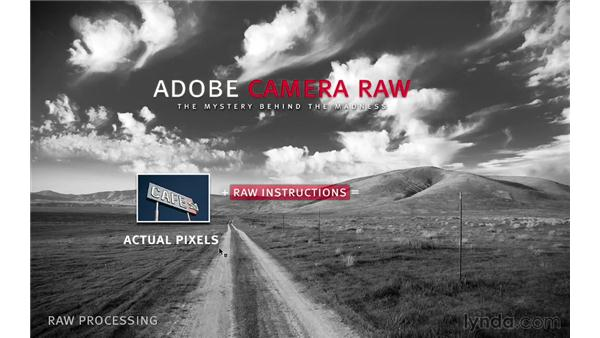 What is Camera Raw?: Photoshop CC for Photographers: Fundamentals