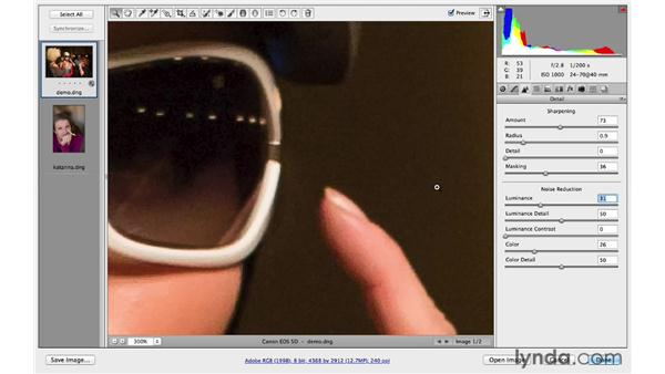Sharpening and reducing noise: Photoshop CC for Photographers: Fundamentals