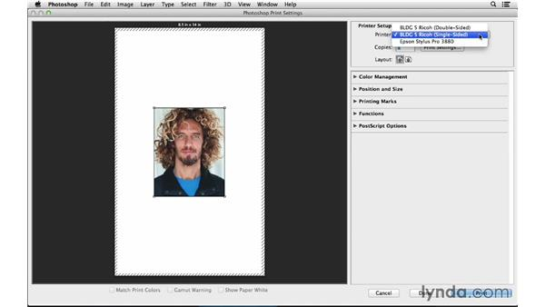 Selecting your printer and paper size: Photoshop CC for Photographers: Fundamentals