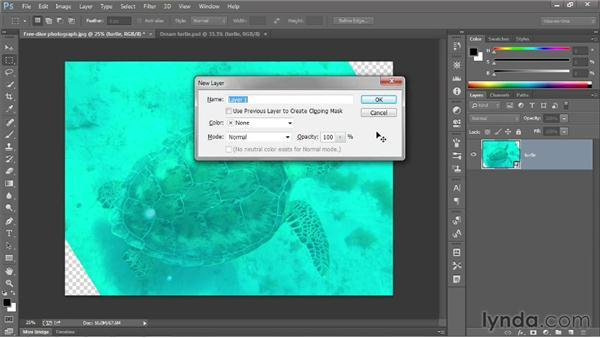 229 Correcting an underwater photograph: Deke's Techniques