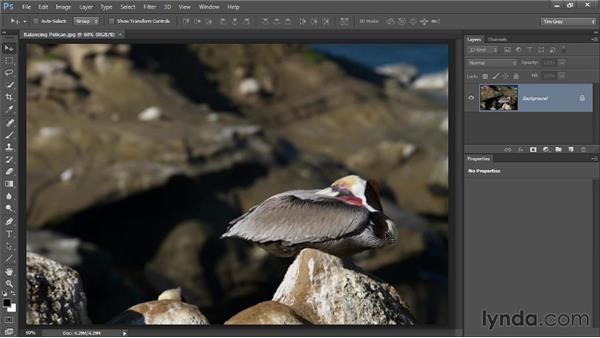 The ethics of cleanup: Photoshop CC Image Cleanup Workshop