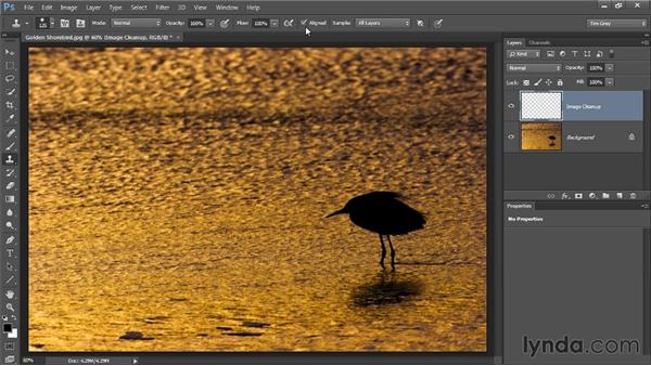 The Clone Stamp tool: Photoshop CC Image Cleanup Workshop