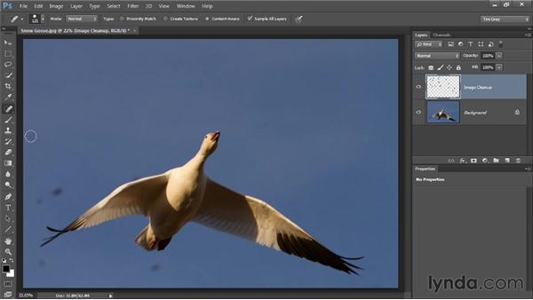 Basic spotting: Photoshop CC Image Cleanup Workshop