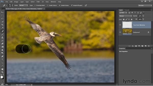 Toning down rather than removing: Photoshop CC Image Cleanup Workshop