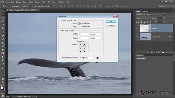 Extending the frame: Photoshop CC Image Cleanup Workshop