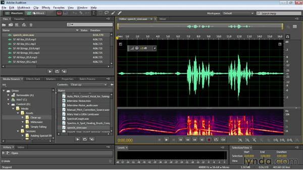 Meeting 64-bit Adobe Audition: Audition CC Essential Training