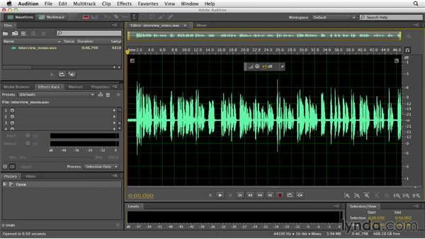 Understanding amplitude: Audition CC Essential Training
