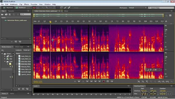 Using the Spectral Frequency Display to clean up your audio: Audition CC Essential Training