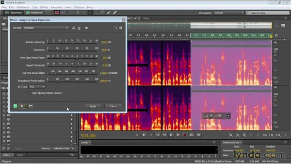 Adaptive noise reduction: Audition CC Essential Training