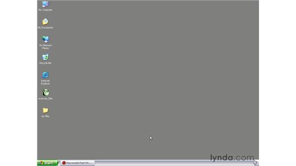 creating an FLV summary: Flash MX 2004 Audio & Video Integration