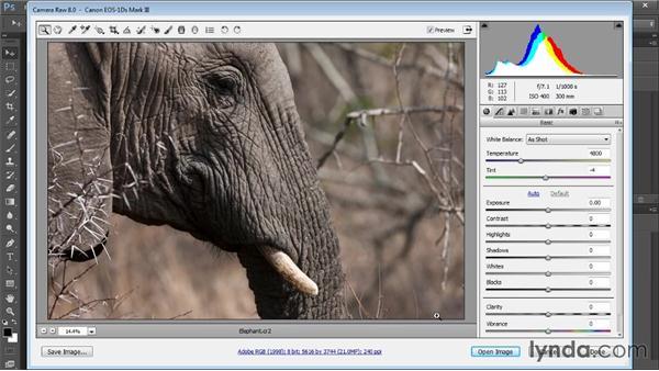 Opening raw captures: Photoshop CC Raw Workshop