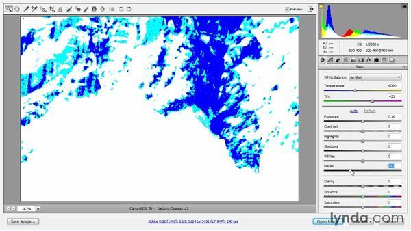 Histogram evaluation: Photoshop CC Raw Workshop