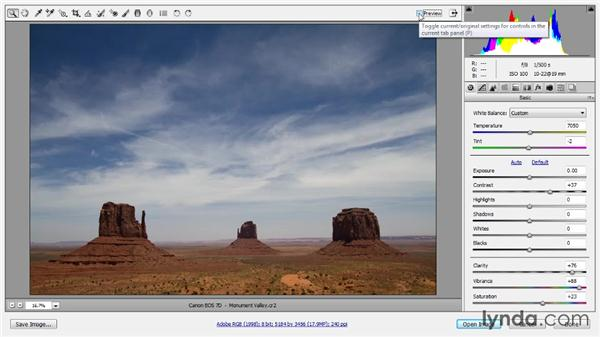 Evaluating with previews: Photoshop CC Raw Workshop