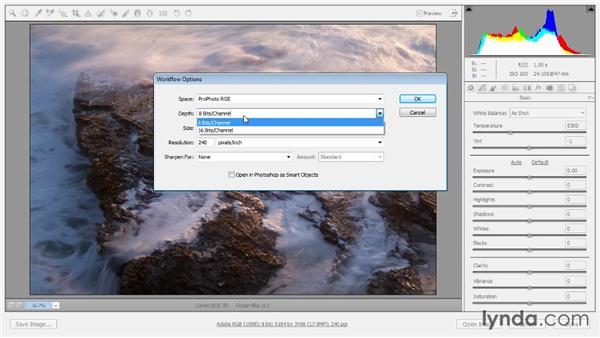 Workflow options: Photoshop CC Raw Workshop