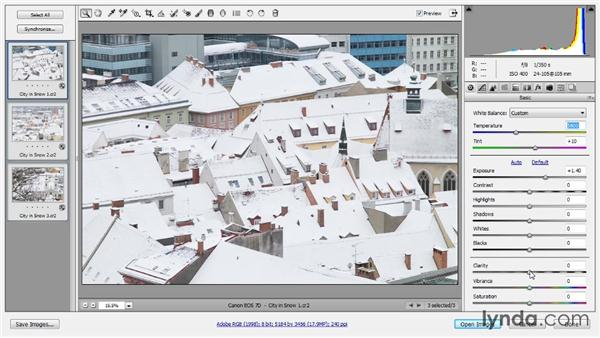 Processing multiple images: Photoshop CC Raw Workshop