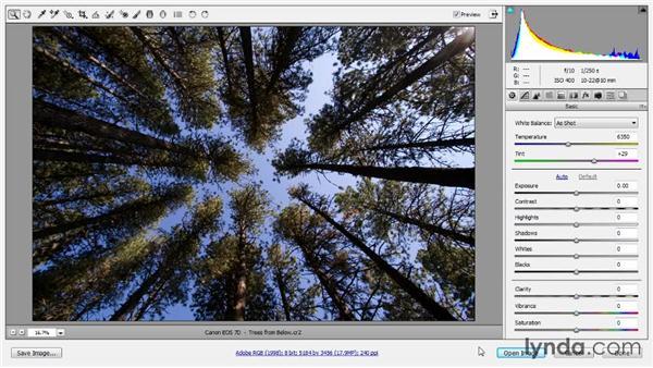 Image rotation: Photoshop CC Raw Workshop