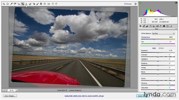 Cropping and straightening: Photoshop CC Raw Workshop