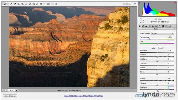 Presence adjustments: Photoshop CC Raw Workshop