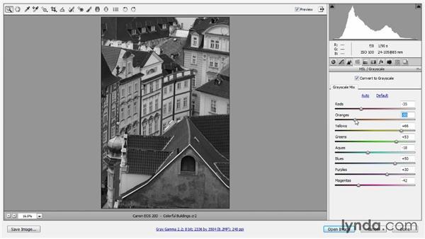 Grayscale conversion: Photoshop CC Raw Workshop