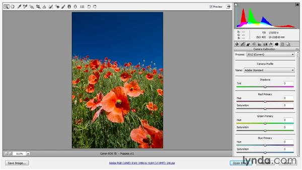 Camera calibration: Photoshop CC Raw Workshop