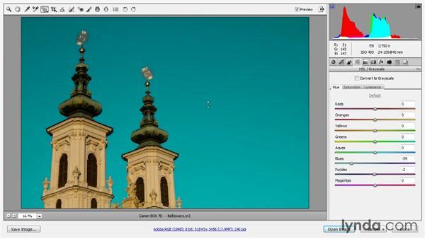 Targeted adjustments: Photoshop CC Raw Workshop