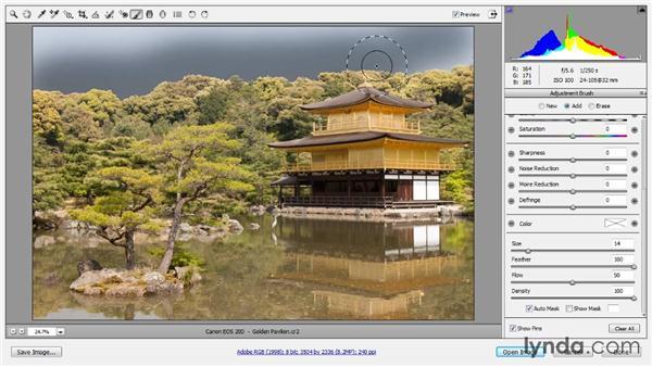 The Adjustment Brush: Photoshop CC Raw Workshop