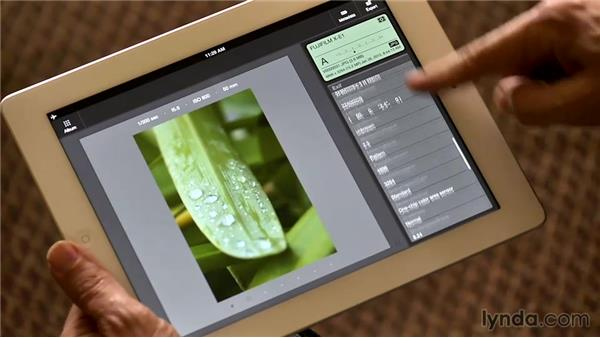 Editing photo metadata with PhotosInfo Pro for iPad: The Practicing Photographer
