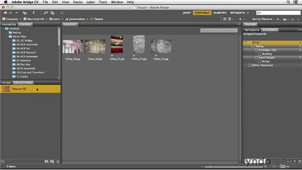 Saving images in collections: Photoshop CC Essential Training (2013)