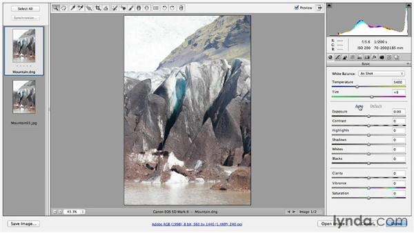: Photoshop CC Essential Training (2013)