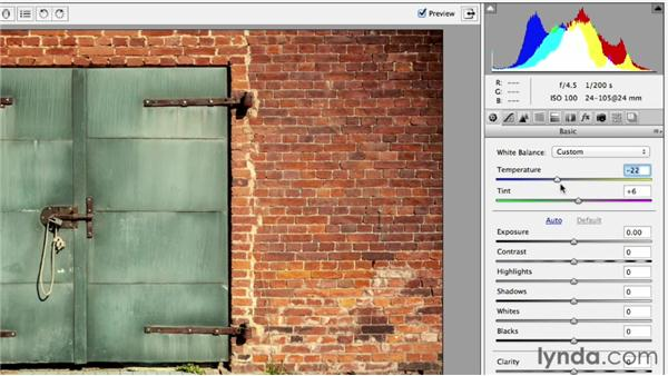 Fixing color casts with the White Balance tool: Photoshop CC Essential Training (2013)
