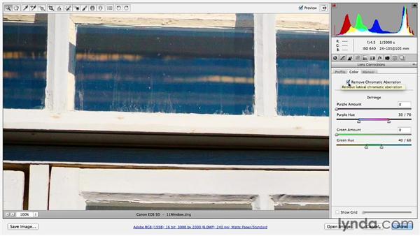 Removing chromatic aberration: Photoshop CC Essential Training (2013)