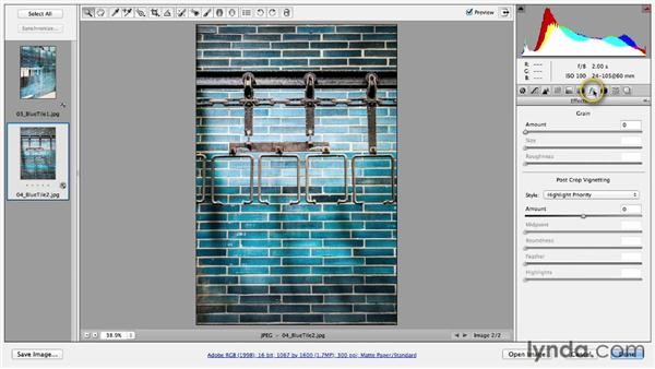 Processing multiple files in Camera Raw: Photoshop CC Essential Training (2013)
