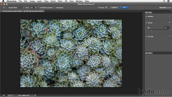 Using the Field, Iris, and Tilt-Shift Blurs: Photoshop CC Essential Training (2013)
