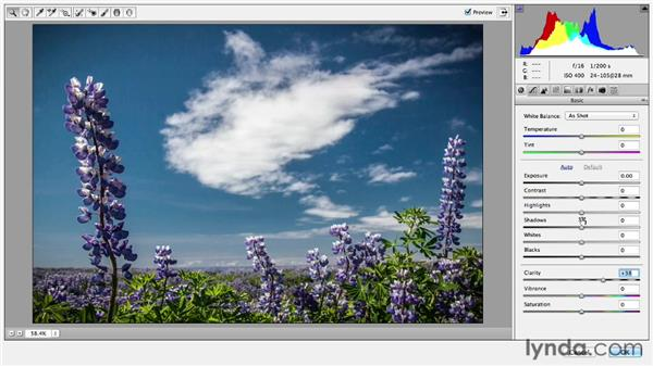 Applying the Camera Raw filter: Photoshop CC Essential Training (2013)