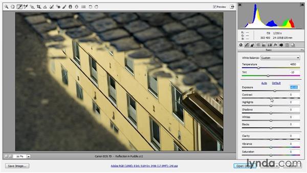 Basic raw conversion: Photoshop CC Image Optimization